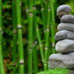 Piękny oraz czysty zieleniec to zasługa wielu godzin spędzonych  w jego zaciszu w trakcie pielegnacji.